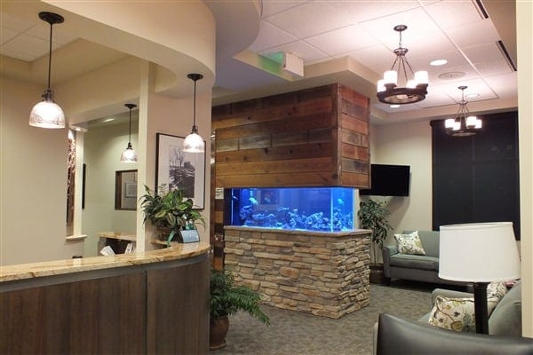 Dentist in Greeley CO office interior